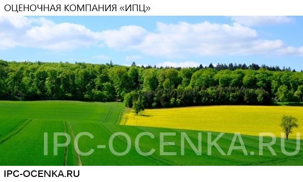 Кадастровая оценка для уменьшения налогов (в Москве и области)